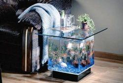 """Аквариум-стол Обслуживание аквариумов в """"Королевском Рифе"""""""