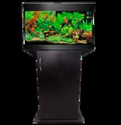 Прямоугольный аквариум Аквас (Aquas) 50 литров