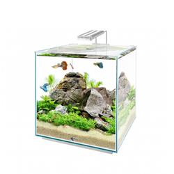 Нанокуб Аквас (Aquas) 30 литров