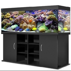 Прямоугольный аквариум Биодизайн (Biodesign) АТОЛЛ 650 литров