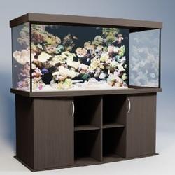 Панорамные аквариумы Аквас (Aquas)
