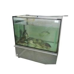 Торговый аквариум 300 литров для продажи рыбы