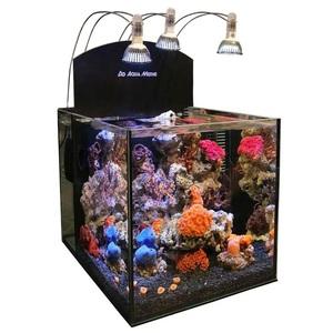 """Аквариум Aqua Medic 80 литров нанориф """"Blenny"""" 40*50*40"""