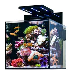 Аквариум Aqua Medic Cubicus (140 литров)