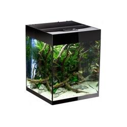Аквариум прямоугольный Aquael GLOSSY 50, черный (135 литров)
