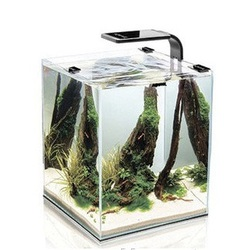 Аквариум Куб Aquael Shrimp Set Smart 19 литров