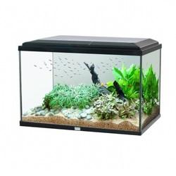 Аквариум Aquatlantis AMBIANCE 60 (115 литров)