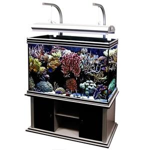Аквариум Aquatlantis EVASION LUX (398 литров)