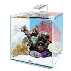 Аквариум Куб Биодизайн Q-Scape Opti 35 литров