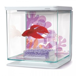 Аквариум Hagen Marina Betta Kit (2 литра)