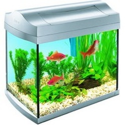 Аквариум Tetra AquaArt Discover Line (20 литров)