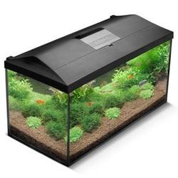 Аквариумный набор Aquael Set Leddy Plus 54 литра