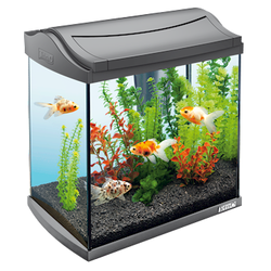 Аквариумный набор Tetra AquaArt Discover Line (20 литров)