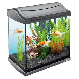 Аквариумный набор Tetra AquaArt Discover Line прямоугольный (20 литров)