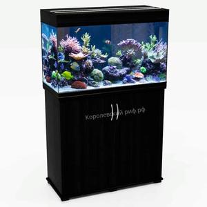 Аквариум Королевский Риф 140 литров (80х35х56) прямоугольный