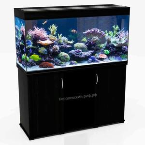 Аквариум Королевский Риф 240 литров (100х40х66) прямоугольный