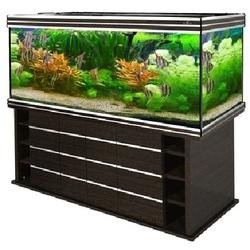 Аквариум Биодизайн (Biodesign) Altum 700 литров прямоугольный